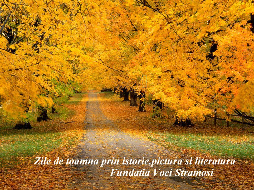 Yellow-road1